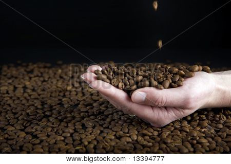 Falling Coffe Beans