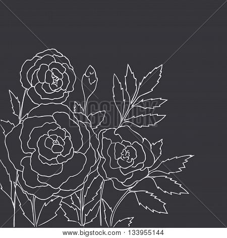 Beautiful roses isolated on black background. Hand drawn vector illustration with flowers. Retro floral card. Romantic delicate bouquet. Element for design. Contour lines. Chalkboard imitation.