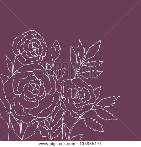 Beautiful roses isolated on purple background. Hand drawn vector illustration with flowers. Pink retro floral card. Romantic delicate bouquet. Element for design. Contour lines and strokes.
