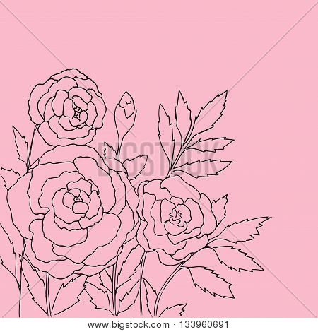 Beautiful roses isolated on pink background. Hand drawn vector illustration with flowers. P Retro floral card. Romantic delicate bouquet. Element for design. Contour lines and strokes.