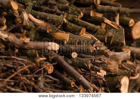 Pile of firewood. Preparation of firewood for the winter. Background