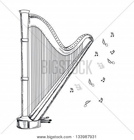 musical instruments harp on white background. Vector.