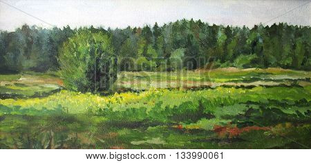 summer landscape with trees and bushes, oil painting