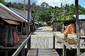 pic of longhouse  - Traditional village originally used by Borneo headhunters - JPG
