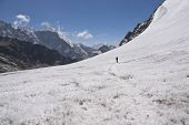 pic of cho-cho  - Trekker crossing the pristine glacier in the high altitude pass (Cho La - 5330m) between Everest Base Camp and Gokyo in the Himalaya Mountains of Nepal ** Note: Slight blurriness, best at smaller sizes - JPG