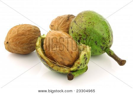 fresh walnuts (Juglans regia)