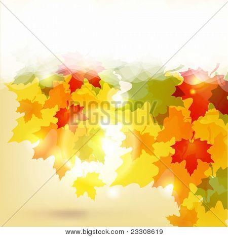 Fondo de otoño con hojas y copia para su texto