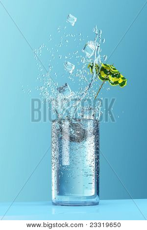 Tall Glass Of Water Splash