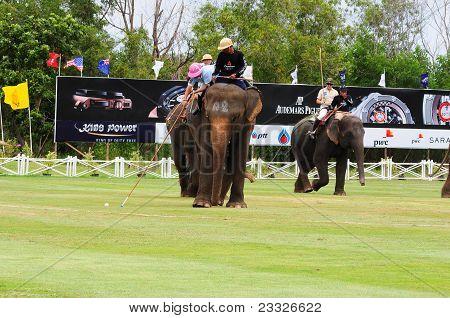 Elephant Polo Game