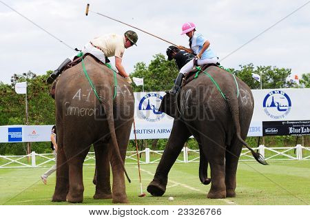 Elephant Polo Players