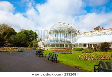 The Palm House At The Botanic Gardens