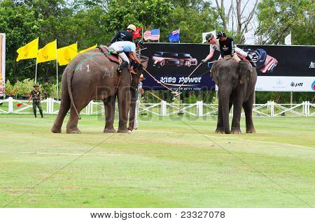 Group Of Elephant Polo Players In A Game