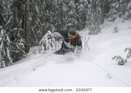 Snowboarder In Fresh Snow