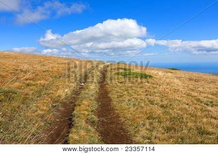 Path On Mountain Field