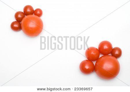 Pé de tomate