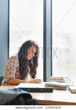 Portret van een serieuze Student schriftelijk