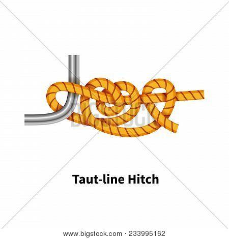 Tautline Hitch Sea Knot Bright
