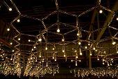 Light Bulbs On The Ceiling