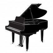 image of grand piano  - Vector piano on white background  - JPG