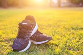 Close Up New Pairs Of Black Running Shoes / Sneaker Shoes On Green Grass Field In The Park At Sunset poster