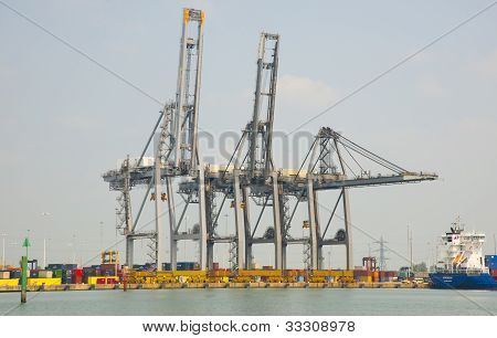 Gantry cranes at the container port
