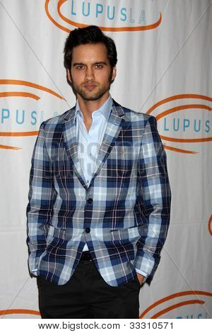 LOS ANGELES - MAY 24:  Michael Steger arrives at the 12th Annual Lupus LA Orange Ball at Beverly Wilshire Hotel on May 24, 2012 in Beverly Hllls, CA