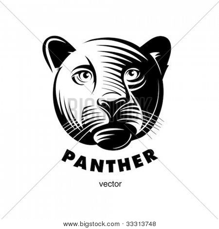 Panther head, engraving style illustration