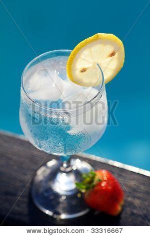 Piscina, sala de estar, una copa de vino con hielo, limón y fresa