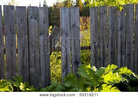 Old Wooden Fence With A Hole