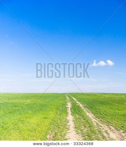 In a Field To Pradise Path