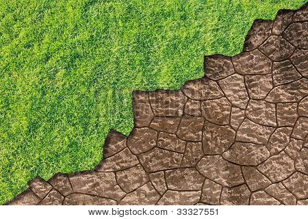 Green Grass And Dried Earth
