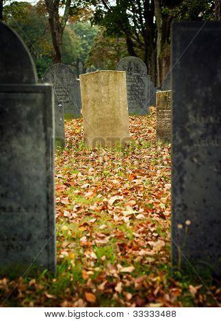 Fall Graveyard