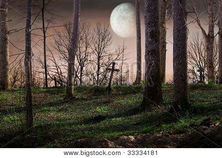 Noite com lua cheia sobre o cemitério
