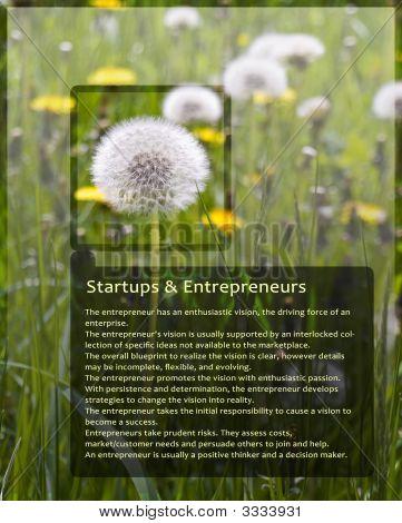 Sample Information Sheet For Entrepreneurs With Dandelion