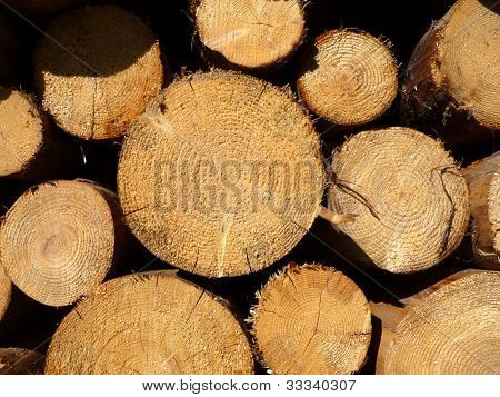 Holz-Haufen