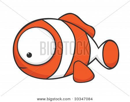 Big-eyed Clownfish