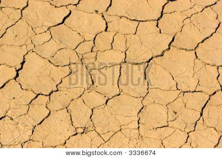 Dry And Arid
