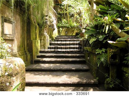 Spa Garden Steps