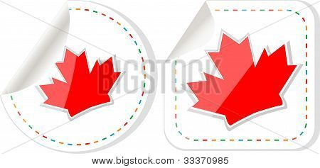 Happy Canada Day Maple Leaf Card Stickers Set