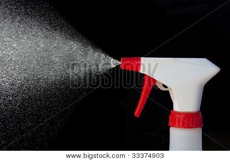 Spray Bottle In Action