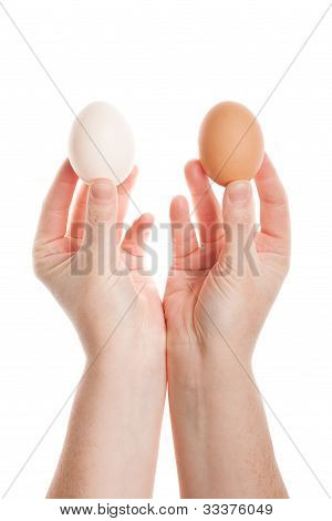 Female Hands With Eggs