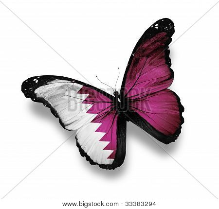 Qatari Flag Butterfly, Isolated On White