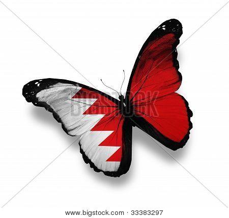 Bahraini Flag Butterfly, Isolated On White