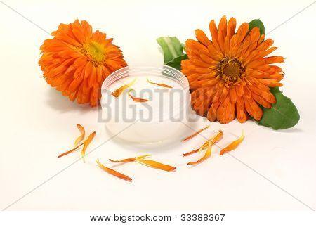 Marigold Salve With Petals