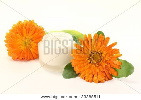 Marigold Salve With Flowers