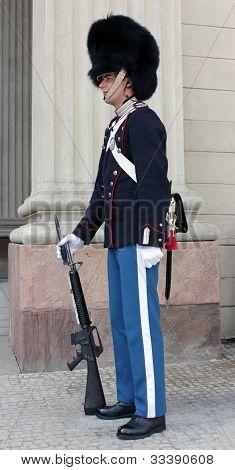 Royal Danish Guardsman
