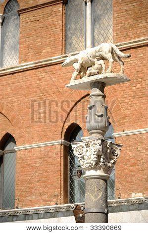 Siena's Wolf