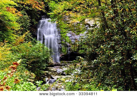 Waterfall And Fall Leaves