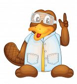 foto of platypus  - Illustration of a platypus wearing a lab coat  - JPG