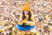 Leaf Play. Small Child With Autumn Leaf Sit On Ground. Happy Child On Autumn Landscape. Little Child poster